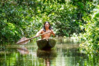 Fotomural Canoa de madeira indígena