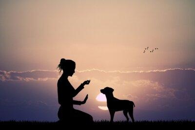 Fotomural cão treinado no por do sol