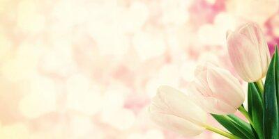 Fotomural Cartão do vintage com flores da tulipa