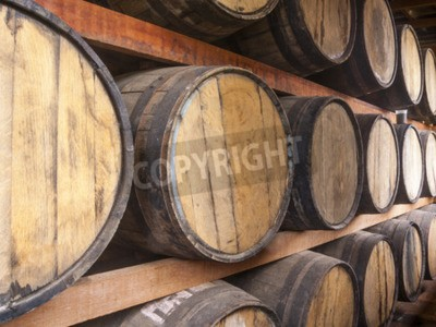 Fotomural Carvalho barris empilhados para armazenar bebidas alcoólicas, como vinho, uísque, rum e etc