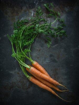Fotomural Cenouras em uma placa