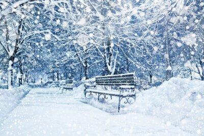 Fotomural Cidade, coberto, neve