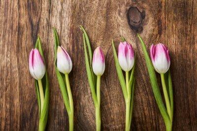 Fotomural Cinco tulipas rosa sobre fundo de madeira
