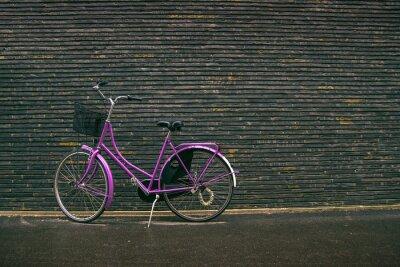 Fotomural Classic Purple Vintage Hipster bicicleta na rua