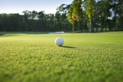 Fotomural Close up de bola de golfe no verde