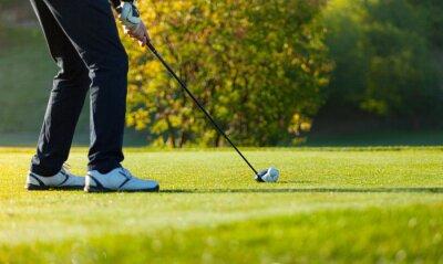 Fotomural Close-up, tocando, golfe, verde, curso