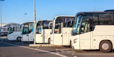 Fotomural Companhia de ônibus