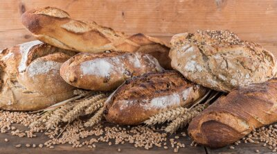 Fotomural Composition of various breads