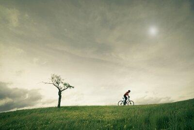 Fotomural conceito vélo