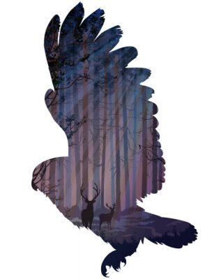 Fotomural coruja