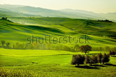 Fotomural Countryside, San Quirico d`Orcia , Tuscany, Italy