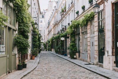 Fotomural Cozy street in Paris, France
