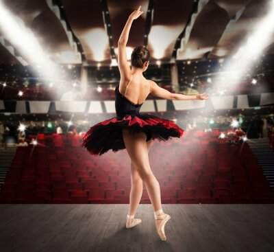 Fotomural Dançarino clássico no teatro