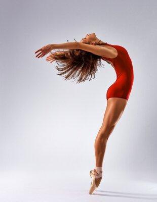 Fotomural dançarino da bailarina