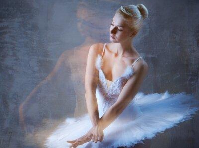 Fotomural Dançarino de bailado bonito