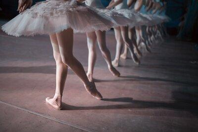 Fotomural Dançarinos no tutu branco dança sincronizada