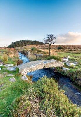 Fotomural Dartmoor National Park