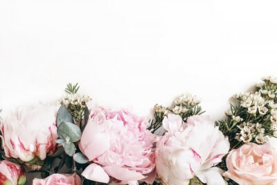 Fotomural Decorative web banner made of beautiful pink peonies, rosies and eucalyptus isolated on white background. Feminine floral frame composition. Styled stock photo.Empty space. Flat lay, top view.