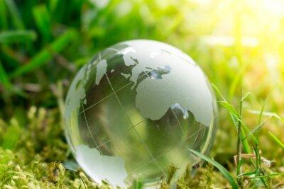 Fotomural Dia Da Terra