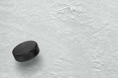 Fotomural Disco do hóquei no gelo