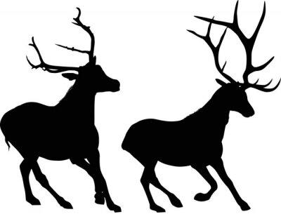 Fotomural Dois, correndo, preto, deers, isolado, branca
