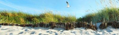 Fotomural dunas da praia - Panorama