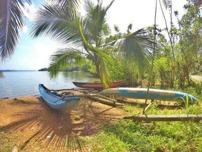 Fotomural Ein blaues Katamaran está localizado em um trecho de areia no Sri Lanka