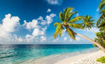 Fotomural Einsamer Strand em Malediven