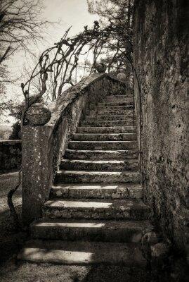 Fotomural escadas antigas