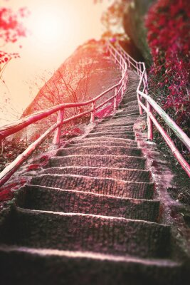 Fotomural Escadas na montanha