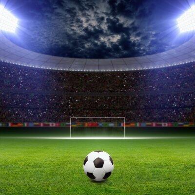 Fotomural Estádio de futebol