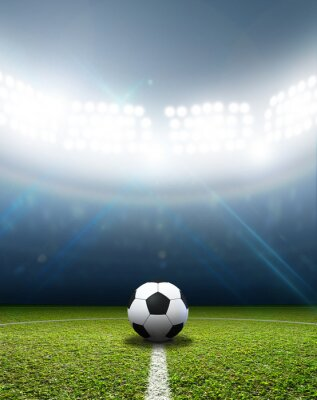 Fotomural Estádio e bola de futebol
