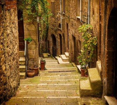 Fotomural Estreito, rua, medieval, tuff, cidade, Pitigliano, verde, plantas, cobblestone ...