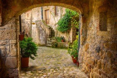 Fotomural Estreito, rua, medieval, tuff, cidade, sorano, arco, verde, plantas, cobblestone ...
