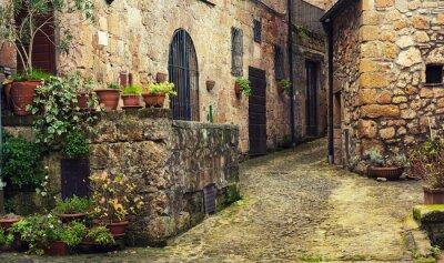 Fotomural Estreito, rua, medieval, tuff, cidade, sorano, verde, plantas, cobblestone ...