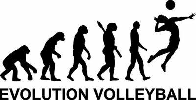 Fotomural Evolução do voleibol