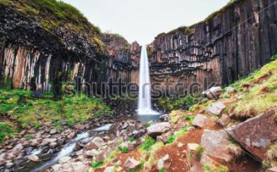 Fotomural Excelente vista da cachoeira de Svartifoss. Cena dramática e pitoresca. Atração turística popular. Islândia, Europa