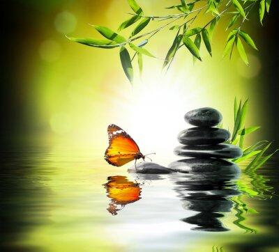 Fotomural exclusivo conceito delicado - a borboleta na água no jardim