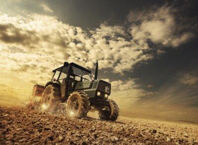 Fotomural Fazendeiro nos campos dirigindo um trator