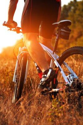 Fotomural Fim, cima, parte traseira, vista, homem, spining, bicicleta, pedais