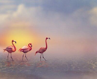 Fotomural Flamingo Birds