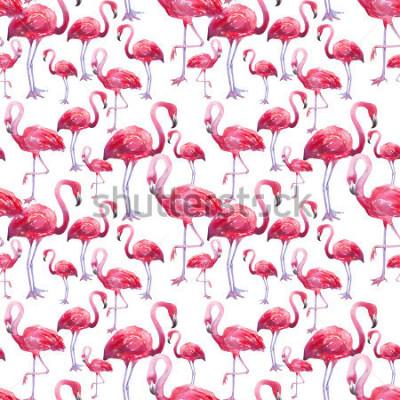 Fotomural flamingo exótico do pássaro da aguarela