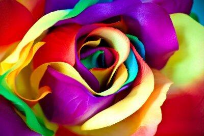 Fotomural flor rosa falso