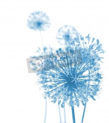 Fotomural Flores azuis / Composição abstrata bonita no fundo branco