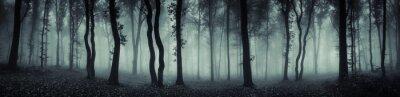 Fotomural Floresta escura panorama fantasia paisagem