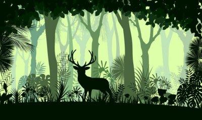 Fotomural Floresta, fundo, selvagem, veado, árvores