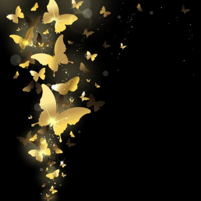 Fotomural fogos de artifício de borboletas