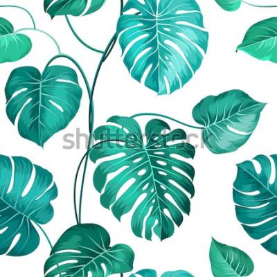Fotomural Folhas de palmeira tópica sobre padrão branco, sem costura. Ilustração vetorial