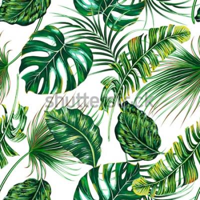 Fotomural Folhas de palmeira tropical, monstera, selva folha vetor sem costura floral verão de fundo