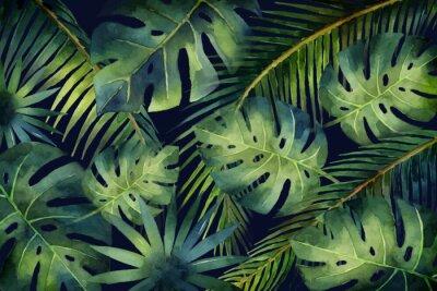 Fotomural Folhas tropicais e ramos da bandeira do vetor da aquarela isolados no fundo escuro.